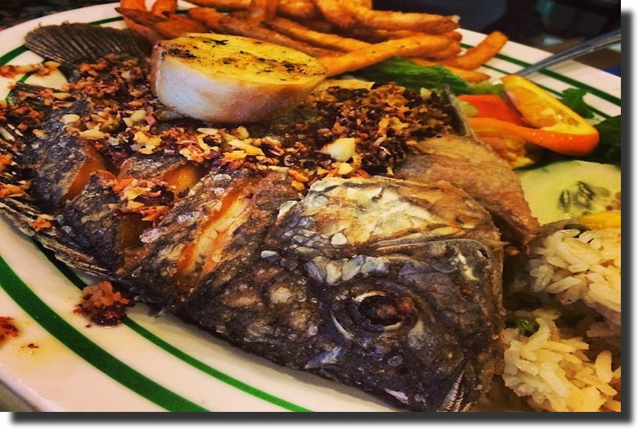 Alegrias seafood chicago fried snapper